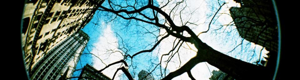 En la retaguardia: Imagen, memoria e identidad
