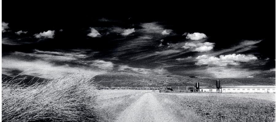 La memoria del paisaje, Montse Morcate, 2007