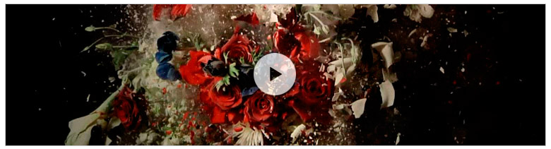 Vídeo promocional de la exposición que puede daros una idea de cómo es la muestra