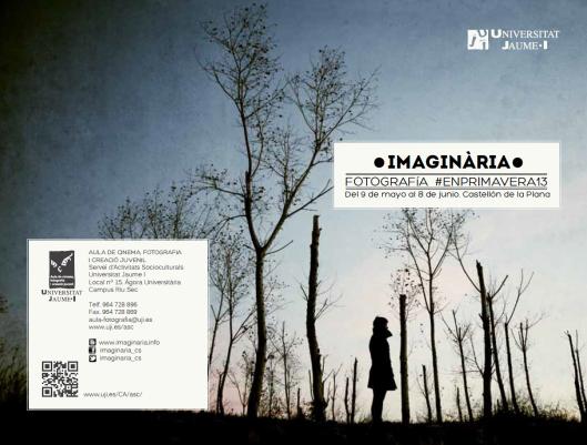 Detalle del programa de Imaginaria 2013 con una fotografía de Iulian Zambream.