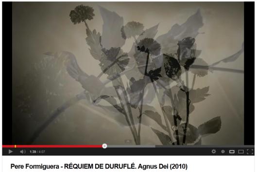 Proyecto realizado por Pere Formiguera para ilustrar fotográficamente el espectáculo Réquiem de Duruflé de la Camerata de Sant Cugat