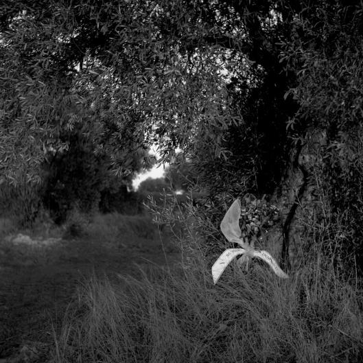Duelos. Serie B. No puedo vivir sin ti. Montse Morcate, 2013, 50x60cm. Impresión giclée a partir de negativocate, 2011-2013.