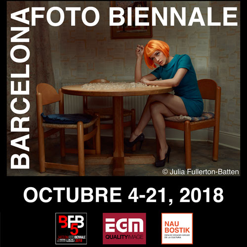 BienalWeb2